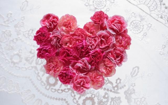 母の日のカーネーションの花言葉と他の花を贈るならオススメはこちら!