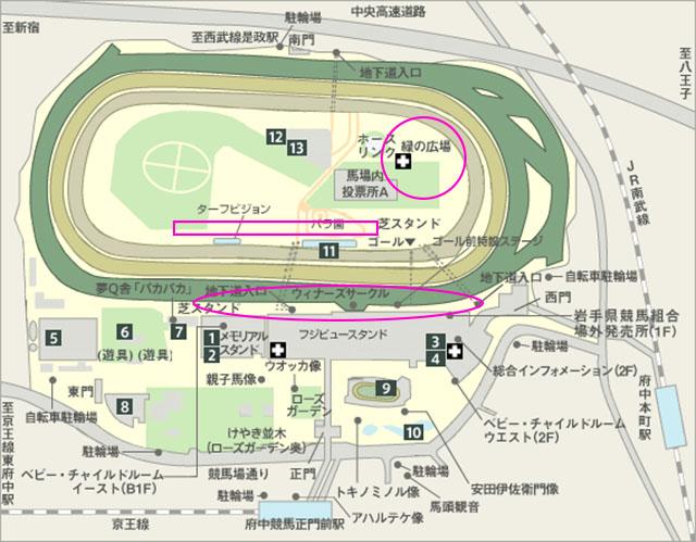 東京競馬場花火大会