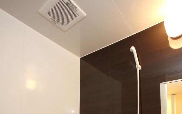 浴室天井カビ