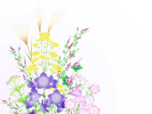 秋の七草の簡単な覚え方と春との違いは?おかゆはいつ食べるのか!