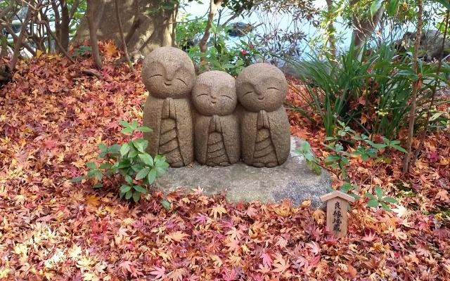 鎌倉長谷寺の紅葉は混雑状況を確認しておこう!ライトアップは必見♪