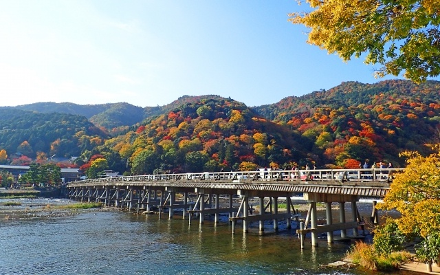 京都嵐山紅葉の見頃2017年はいつ?おすすめコースやライトアップも♪