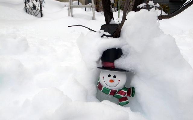 都心の大雪