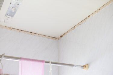 お風呂掃除の難問の天井は100均グッズでササっとすまそう!