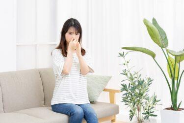 エアコンの室外機が臭う?もしかしてこのせいで部屋が臭いのか?